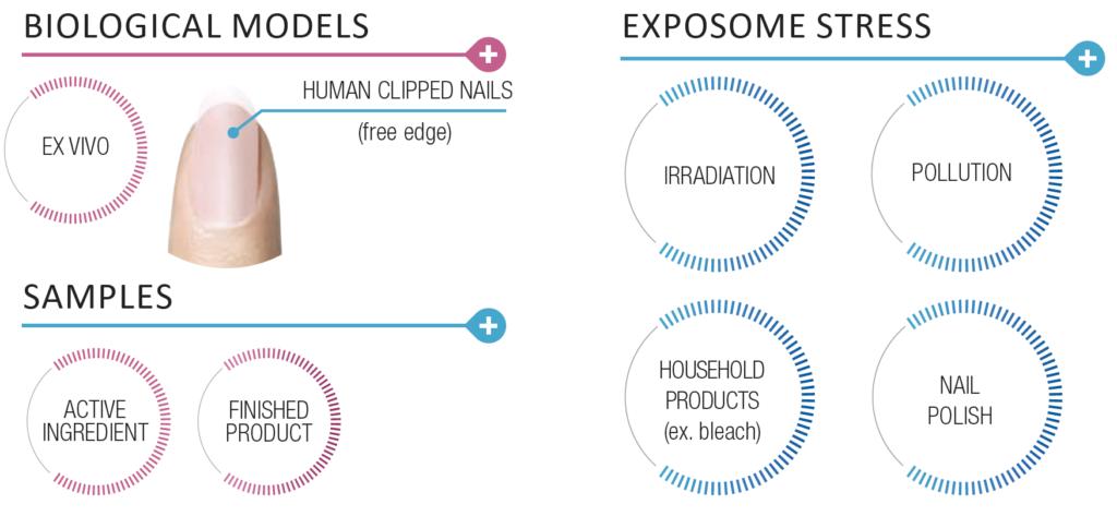 oxiproteome tech platform nail